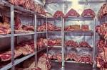 В Петеребурге обнаружили мясной цех с многочисленными крысиными норами