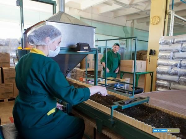 Работа киев вахтовим методом производство упаковщици